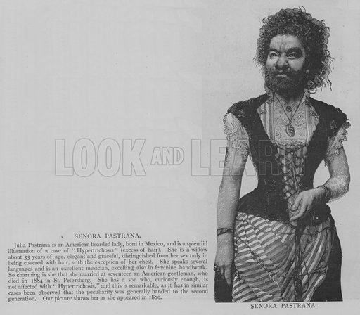 Senora Pastrana. Illustration for The Picture Magazine, 1893.