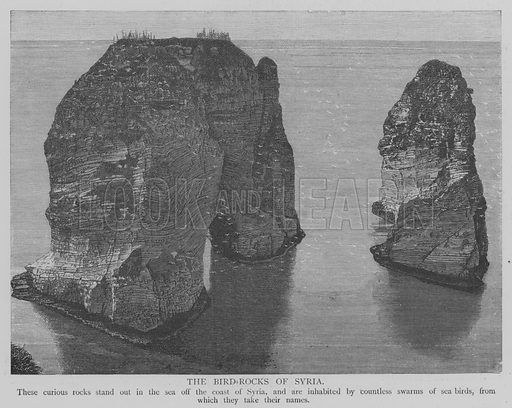 The Bird-Rocks of Syria. Illustration for The Picture Magazine, 1893.