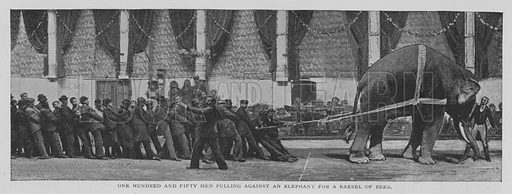 One Hundred and Fifty Men Pulling against an Elephant for a Barrel of Beer. Illustration for The Strand Magazine, 1897.