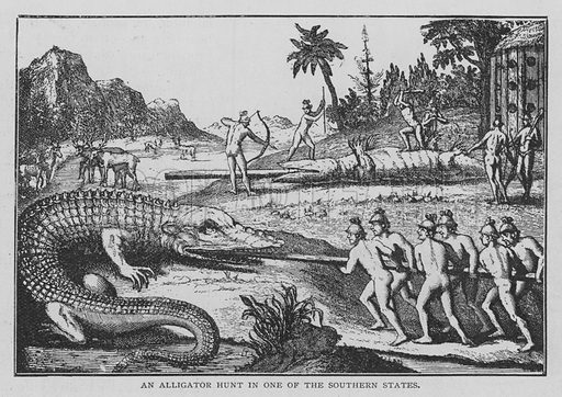 An Alligator Hunt in One of the Southern States. Illustration for The Strand Magazine, 1897.