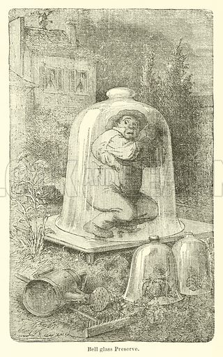Bell glass Preserve. Illustration for Thunder and Lightning by W De Fonvielle (Charles Scribner, 1871).