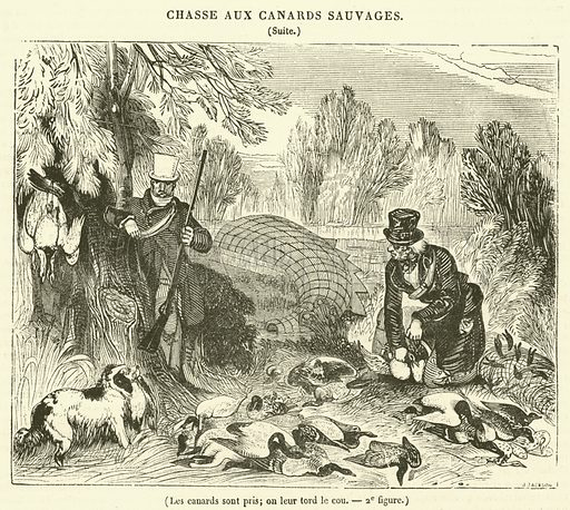 Les canards sont pris, on leur tord le cou. Illustration for Le Magasin Pittoresque (1835).