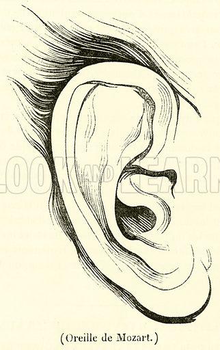 Oreille de Mozart. Illustration for Le Magasin Pittoresque (1835).
