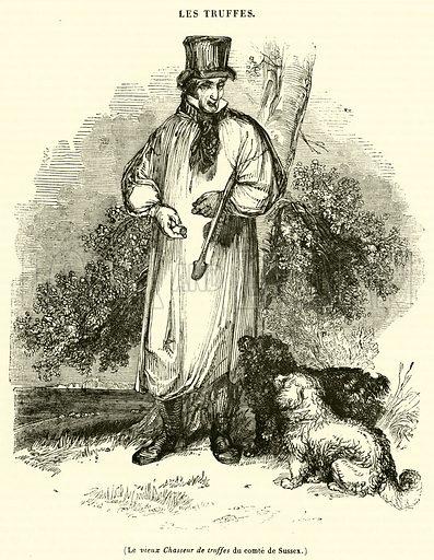 Le vieux Chasseur de truffes du comte de Sussex. Illustration for Le Magasin Pittoresque (1839).