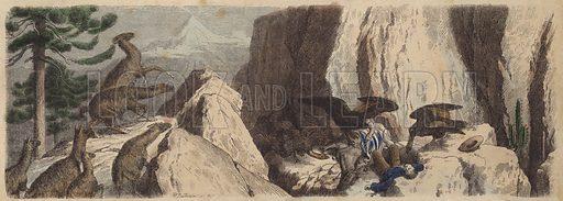 The Chilean Andes. Illustration from Die Welt in Bildern (Braun & Schneider, Munich, 19th Century).