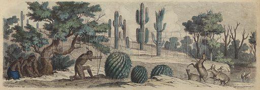 Colourado. Illustration from Die Welt in Bildern (Braun & Schneider, Munich, 19th Century).
