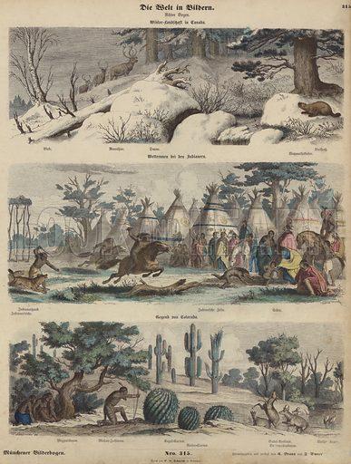 North America: winter landscape in Canada; Native Americans racing; Colourado. Illustration from Die Welt in Bildern (Braun & Schneider, Munich, 19th Century).