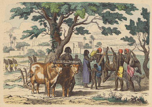 Ancient Egyptian farmer and hunters. Illustration from Bilder aus dem Alterthume (Braun & Schneider, Munich, 19th Century).