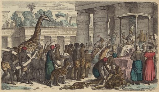 Tribute offerings from Ethiopia being presented to the Pharaoh of Egypt. Illustration from Bilder aus dem Alterthume (Braun & Schneider, Munich, 19th Century).