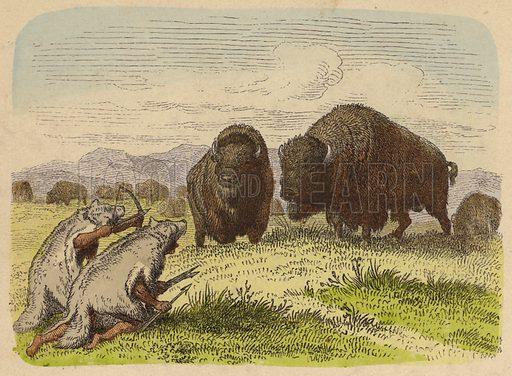 Native Americans wearing wolfskins hunting buffalo.