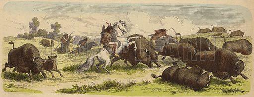 Native Americans on horseback hunting buffalo.