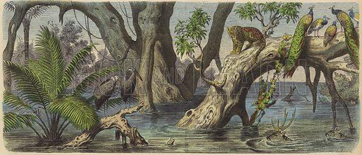 Flooding in eastern India. Illustration from Die Welt in Bildern (Braun & Schneider, Munich, 19th Century).