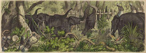 Catching elephants in Ceylon. Illustration from Die Welt in Bildern (Braun & Schneider, Munich, 19th Century).