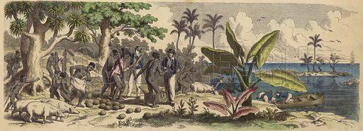 A Pacific island. Illustration from Die Welt in Bildern (Braun & Schneider, Munich, 19th Century).