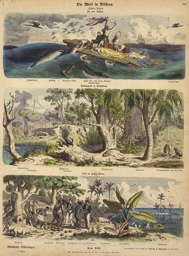The Pacific: shipwreck survivors adrift on a raft in the South Seas; forest in New Holland (Australia); a Pacific island. Illustration from Die Welt in Bildern (Braun & Schneider, Munich, 19th Century).