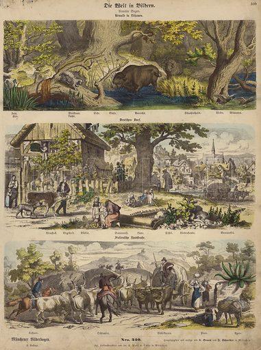 Europe: forest in Lithuania; German village; Italian country road. Illustration from Die Welt in Bildern (Braun & Schneider, Munich, 19th Century).