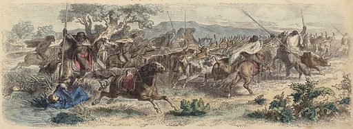 Indians surprising Gauchos on the Pampas and making off with their herd of cattle. Illustration from Die Welt in Bildern (Braun & Schneider, Munich, 19th Century).