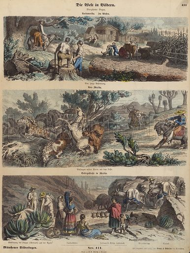 The American West: a new settlement; lassoing wild horses in New Mexico; a mountain road in Mexico. Illustration from Die Welt in Bildern (Braun & Schneider, Munich, 19th Century).