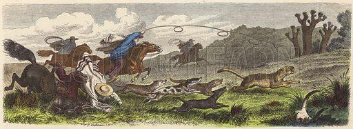 Hunting puma with lassos in Brazil. Illustration from Die Welt in Bildern (Braun & Schneider, Munich, 19th Century).