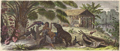 Indian house on the Orinoco River. Illustration from Die Welt in Bildern (Braun & Schneider, Munich, 19th Century).