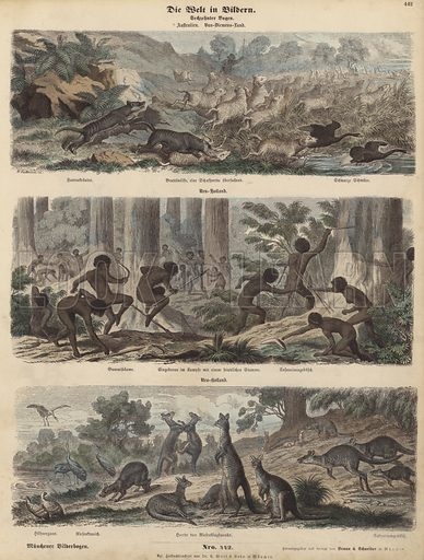 Australia. Illustration from Die Welt in Bildern (Braun & Schneider, Munich, 19th Century).