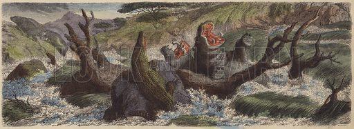 Mountain stream in north-east Africa in flood during the rainy season. Illustration from Die Welt in Bildern (Braun & Schneider, Munich, 19th Century).
