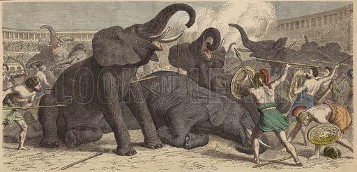 Killing of captured elephants in a Roman arena. Illustration from Bilder aus dem Alterthume (Braun & Schneider, Munich, 19th Century).