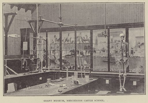 Grant Museum, Merchiston Castle School. Illustration for Illustrations, a Pictorial Review of Knowledge (W Kent, 1889).