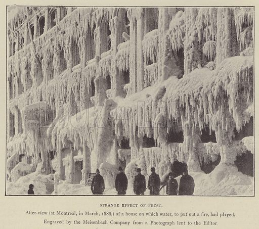 Strange effect of frost. Illustration for Illustrations, a Pictorial Review of Knowledge (W Kent, 1889).