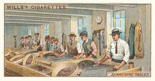 Searching tables. Illustration for one of a series of cigarette cards on the subject of mining, published by Wills's Cigarettes, early 20th century.