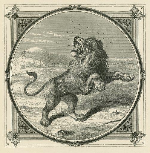 The Gnat stings the eyes of the Lion. Illustration for Moral Emblems with Aphorisms, Adages, and Proverbs of All Ages and Nations from Jacob Cats and Robert Farlie with illustrations freely rendered from designs found in the works by John Leighton, FSA, translated and edited with additions by Richard Pigot (Longman, 1860).