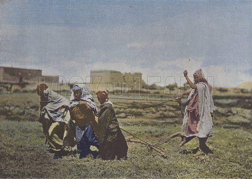 Le Labourage en Kabylie. Illustration for La France, Aquarelles Souvenirs de Voyages (Boulanger, c 1900).