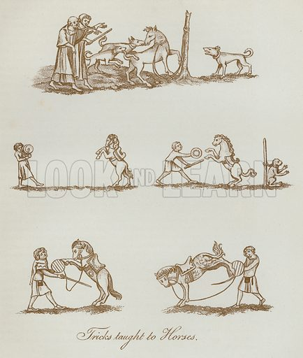 Tricks taught to Horses. Illustration for The Sports and Pastimes of the People of England by Joseph Strutt, 1801, a new edition, much enlarged and corrected by J Charles Cox (Methuen, c 1890). Contains fine reproductions of illustrations in original edition.