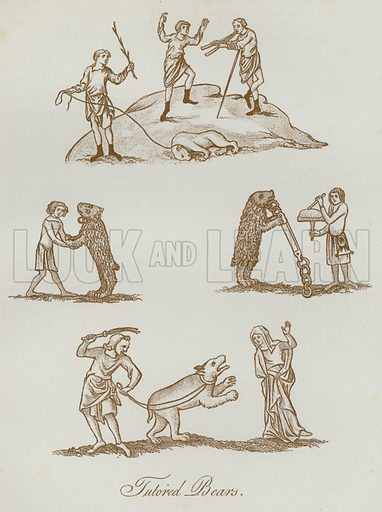 Tutored Bears. Illustration for The Sports and Pastimes of the People of England by Joseph Strutt, 1801, a new edition, much enlarged and corrected by J Charles Cox (Methuen, c 1890). Contains fine reproductions of illustrations in original edition.
