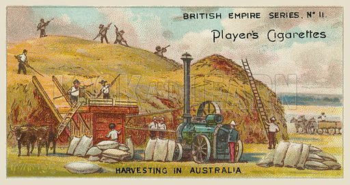 Harvesting in Australia. Illustration for one of a series of cigarette cards on the subject of the British Empire published by Player's Cigarettes, early 20th century.