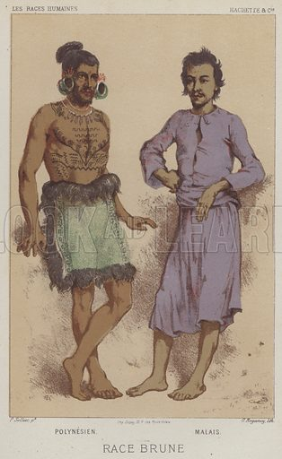 Race Brune, Polynesien, Malais. Illustration for Les Races Humaines by Louis Figuier (Hachette, 1872).
