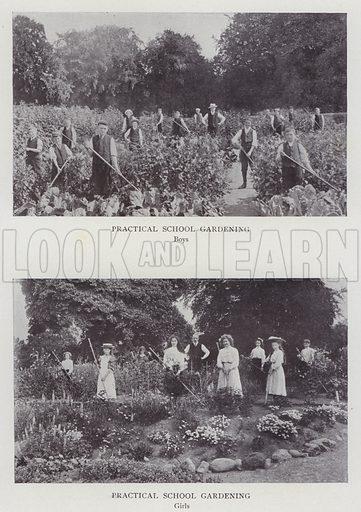 Practical School Gardening, Boys, Girs. Illustration for The Teacher's Encyclopaedia edited by AP Laurie (Caxton, 1911).