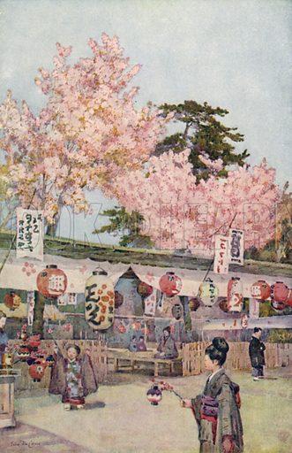 Japanese feast of cherry blossom