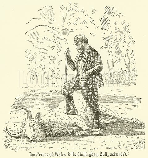 The Prince of Wales and the Chillingham Bull, 17 October 1872. Illustration for The Monthly Chronicle of North Country Lore and Legend, 1889.
