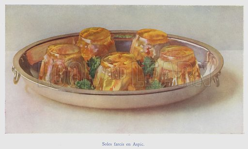 Soles farcis en Aspic. Illustration for The Ideal Cookery Book by MA Fairclough (George Routledge, c 1914).