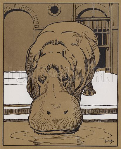 """""""I cannot bring myself to believe that this is a very witty animal."""" Illustration for The Zoo by Walter Emanuel (Alston Rivers, 1904)."""