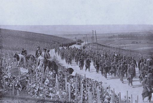 French soldiers marching past a vineyard in Champagne, World War I, 1914. Illustration from Nelson's Portfolio of War Pictures (Thomas Nelson and Sons, Edinburgh).