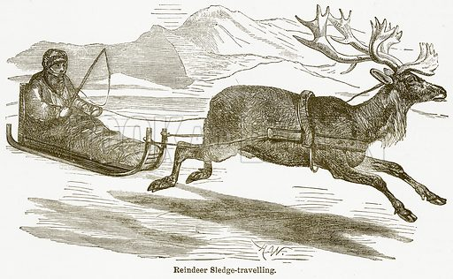 Reindeer Sledge-Travelling. Illustration from The National Encyclopaedia (William Mackenzie, c 1900).