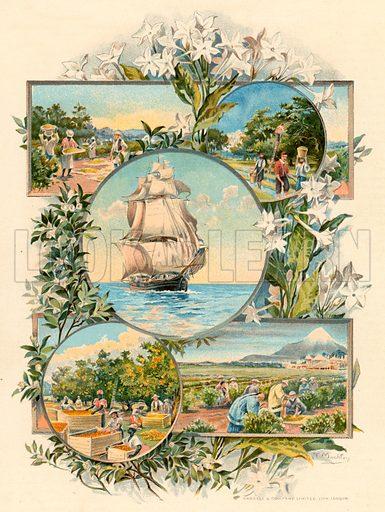 International trade. Illustration fom The New Popular Educator (Cassell, c 1890).