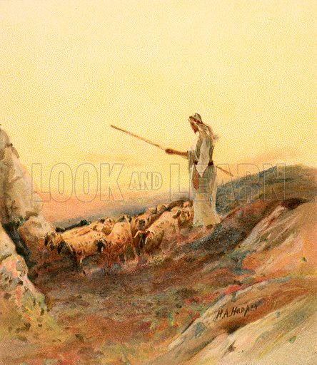 A shepherd counting his sheep. Illustration from The Pictorial New Testament (Scripture Gift Mission, c 1915).