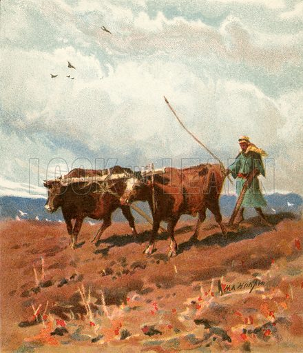 Ploughing. Illustration from The Pictorial New Testament (Scripture Gift Mission, c 1915).