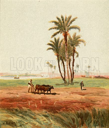In the field. Illustration from The Pictorial New Testament (Scripture Gift Mission, c 1915).