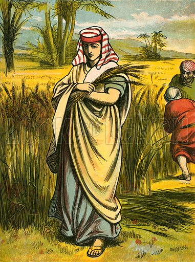 Ruth gleaning. Illustration from Th Sunday Story Book (Frederick Warne, 1886).