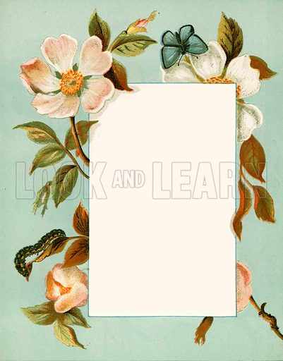 June. Floral design for The Birthday Book (George Routledge, c 1877).