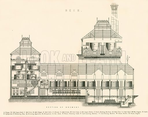 Section of Brewery. Illustration from The National Encyclopaedia (William Mackenzie, c 1870).
